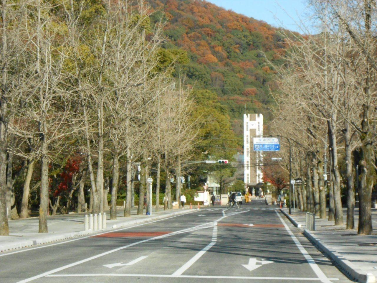 岡山大学 中央図書館が見える