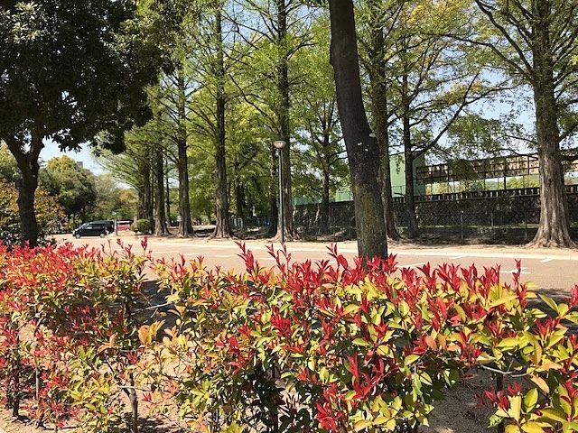 岡山市北区いずみ町/岡山県総合グラウンド