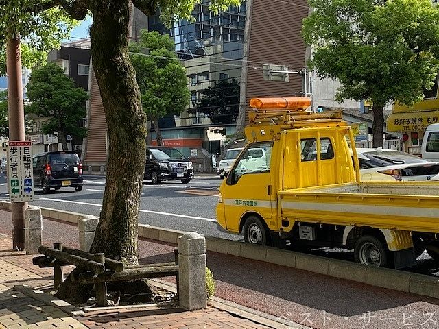 瀬戸内造園,樹木医,樹木管理,街路樹管理