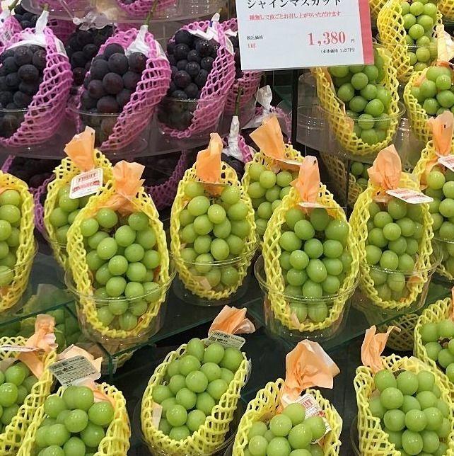 岡山のぶどうは本当に美味しい!ここでは一般ピープルも手の届く、ちょっと贅沢どころ